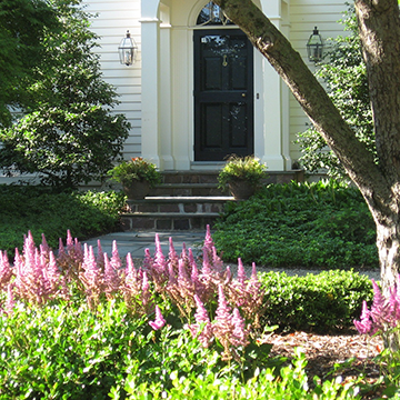 Pink flowers and green ground cover lining the walkway to the front door of a well maintained home
