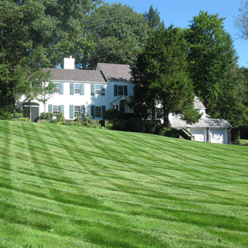 Immaculately landscaped lawn leading up to large house.